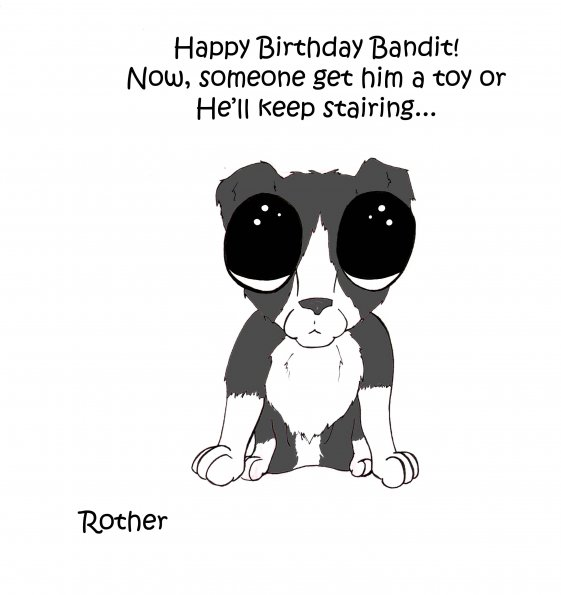 rother0-Bandit_B-day