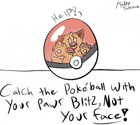 Blitz Pokeball