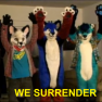 WE SURRENDER
