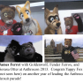 art jam july anthrocon fursuits