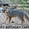 Happy Birthday, Yappy